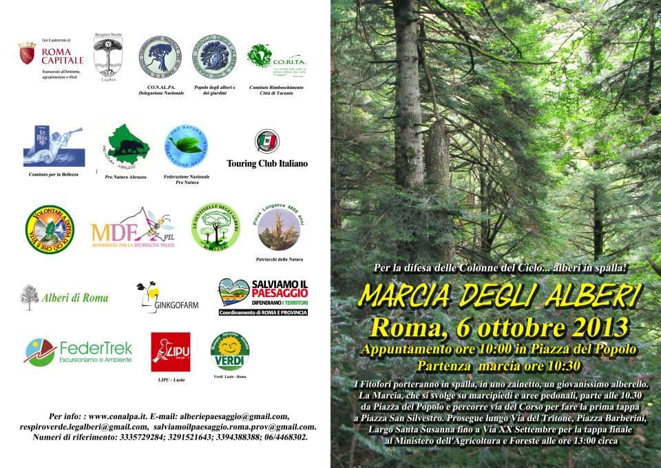 Marcia degli alberi 2013
