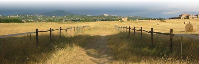 Continua la battaglia per fermare la maxi-cementificazione dell'agro Romano