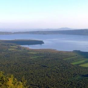 La cultura si mobilita per i faggi del lago di Vico