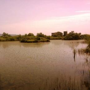 Ladispoli difende il proprio territorio