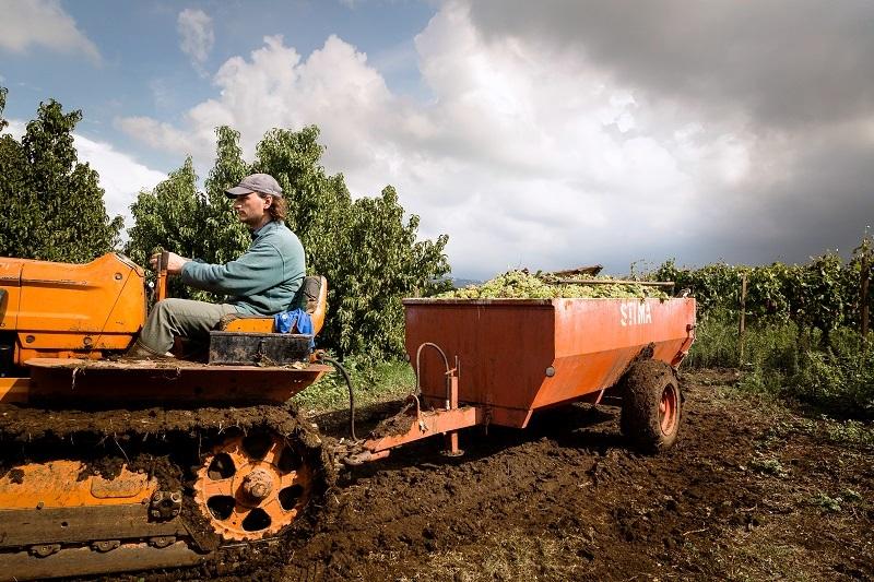 Paolo guida il proprio trattore, un'immagine che rischia di sparire