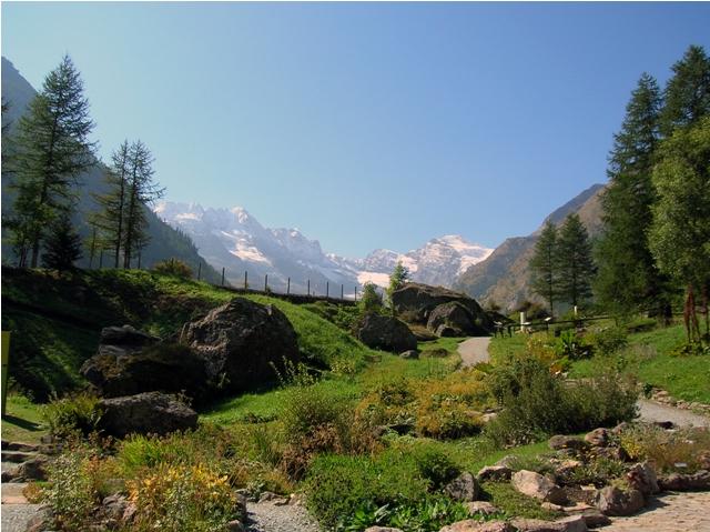 Gran Paradiso visto dal Giardino alpino Paradisia (foto Wikipedia.org)