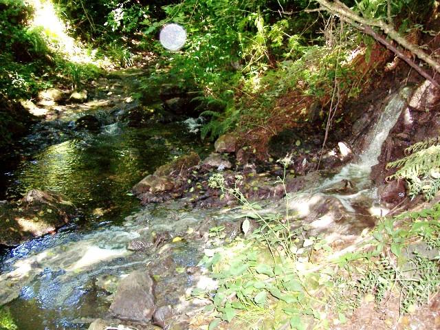 La fogna di Via del Paradiso, un tubo di 20 cm sversa liquami nel Fosso Renana e poi nel lago