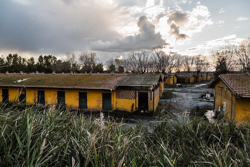 Stalle dell'ippodromo Tor di Valle (ph. Luca Verducci)