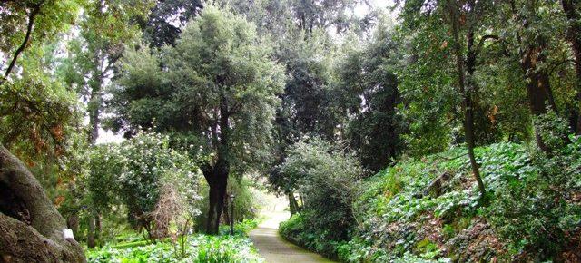 Verde e paesaggio, Roma ha bisogno di un regolamento