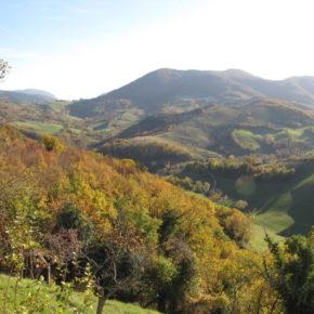 Consumo di suolo, Salviamo il Paesaggio presenta la sua proposta di legge