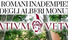 """Alberi monumentali, l'accusa di Latium Vetus: """"Comuni romani inadempienti su tutela e censimento"""""""