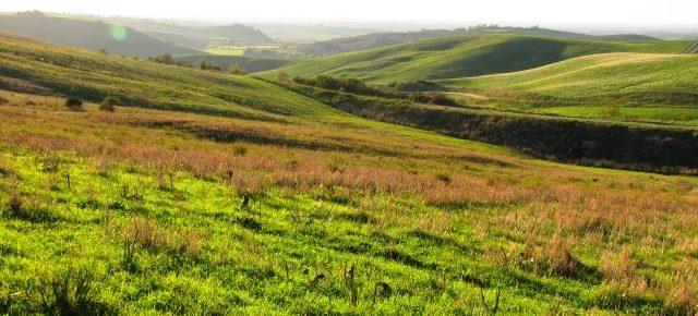 Legge per l'arresto del consumo di suolo, Salviamo il Paesaggio scrive ai Presidenti di Senato e Camera