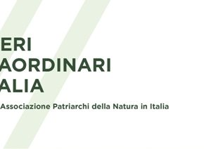 """""""Alberi straordinari d'Italia"""", la nuova giuda ai patriarchi della natura"""