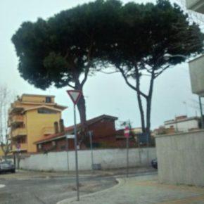 """Ladispoli, il """"nuovo"""" che avanza. Senza alberi"""